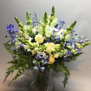 דלפין כחול לבן - לה ולי פרחים