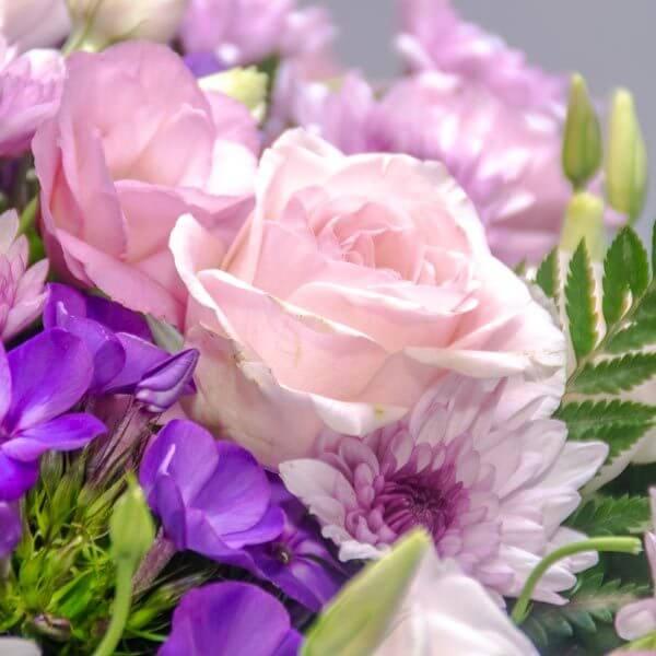 שדה סתווי - לה ולי פרחים