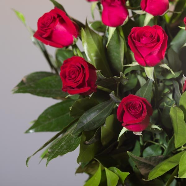 לה ולי פרחים - תשוקה אדומה - משלוחי פרחים בחיפה