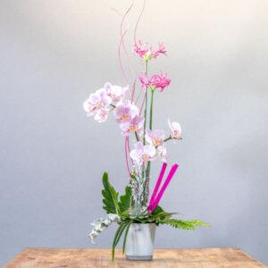 סידור סחלב מהודר - לה ולי פרחים בחיפה