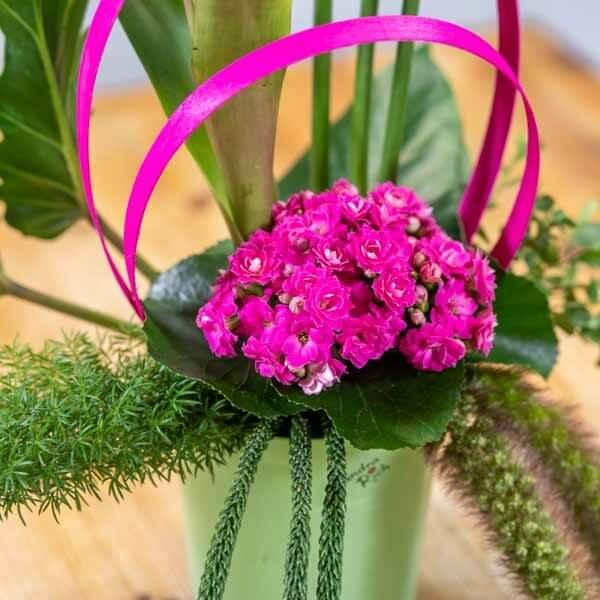 סידור ורוד טרופי - לה ולי פרחים