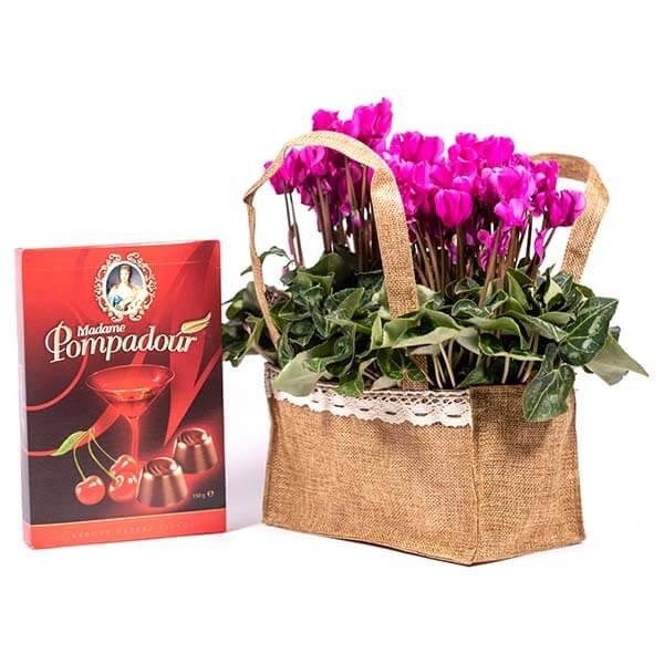 לה ולי פרחים - מארז רקפות מתוקות - משלוחי פרחים בחיפה
