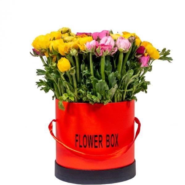 לה ולי פרחים בוקט טוליפים
