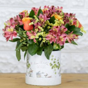 לה ולי פרחים - בוקס אסטרומריה וענפי קישוט