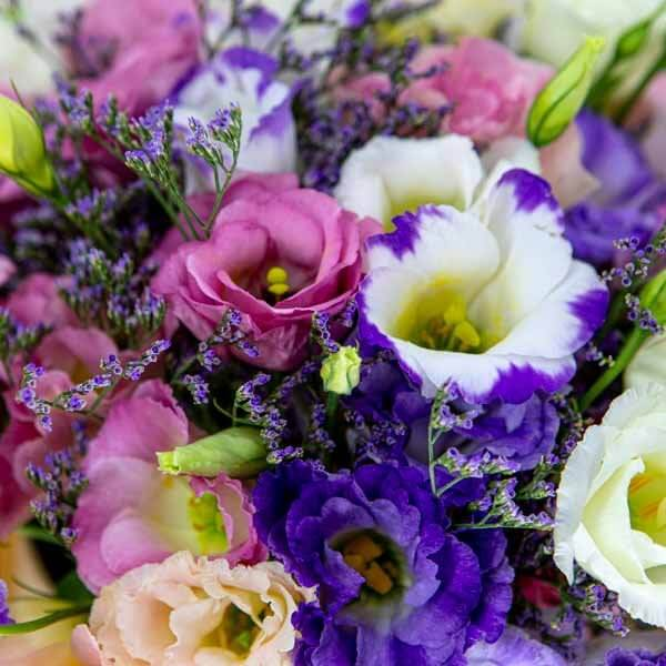 לה ולי פרחים - בוקס ליזינטוס