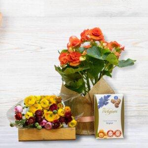 לה ולי פרחים - אהבה פורחת