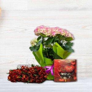 לה ולי פרחים - לה ולי פרחים - צמד מאוהבים