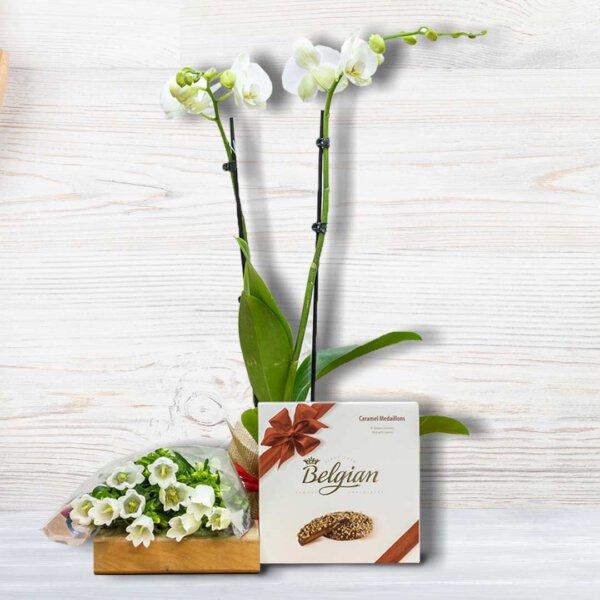 לה ולי פרחים - מארז סחלב מאוהב