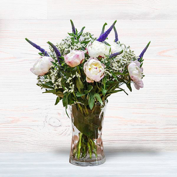 לה ולי פרחים - אדמונית עליזה