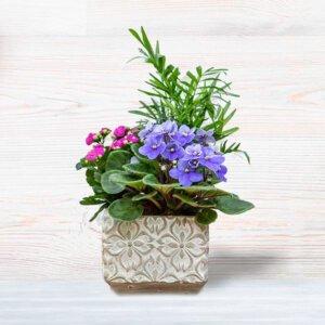 לה ולי פרחים - קוקטייל קוביה