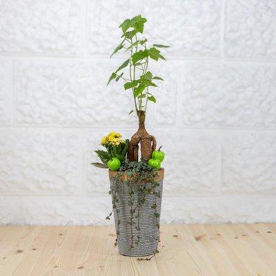 קוקטייל עץ אהבה