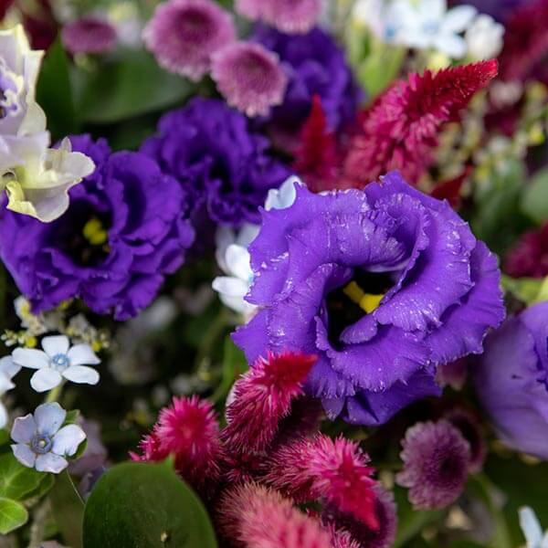 לה ולי פרחים   משלוחי פרחים בחיפה   מתנות בחיפה